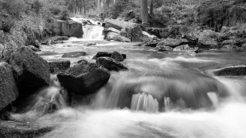 Harz photos
