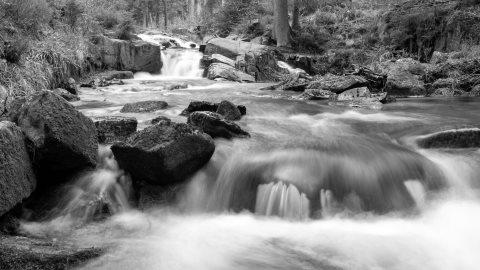 Harz photos